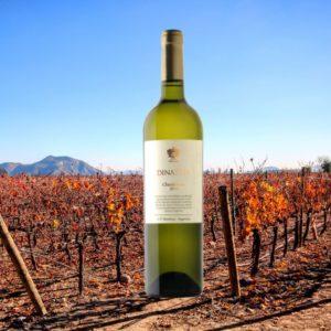 Dinastia Chardonnay Organico